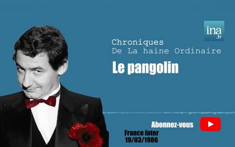 «Mes excuses au Pangolin»